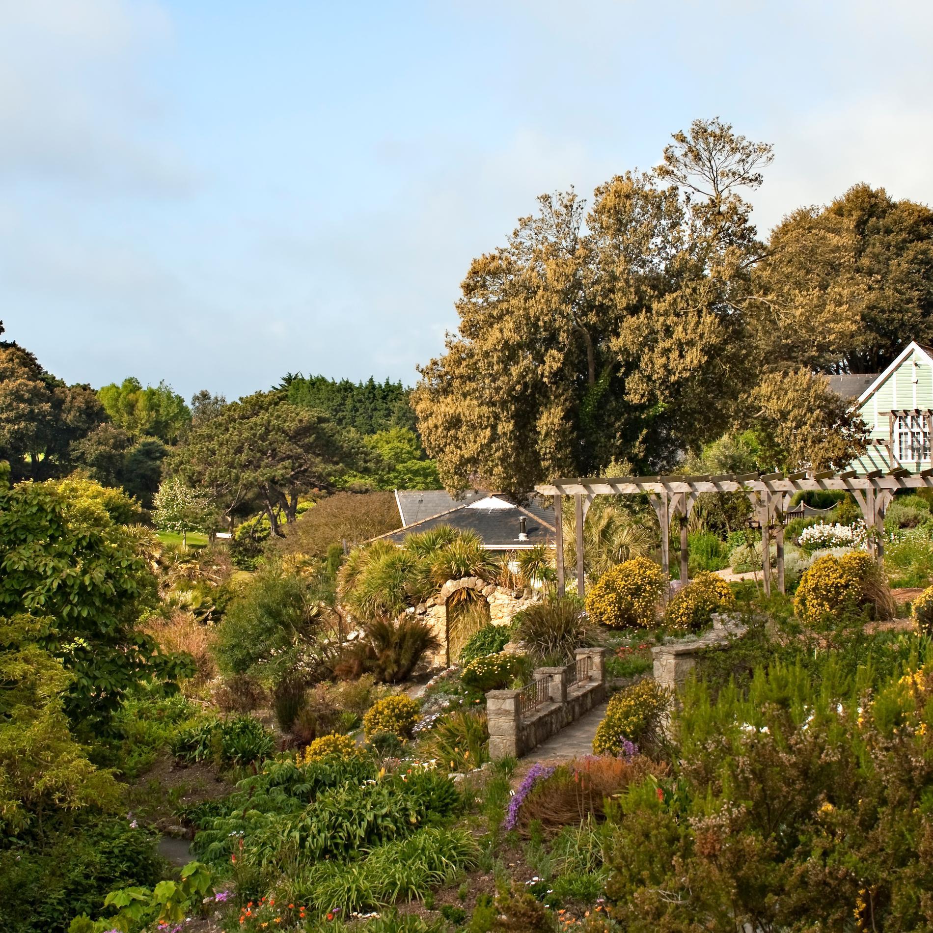 Jardin botanique de Ventnor
