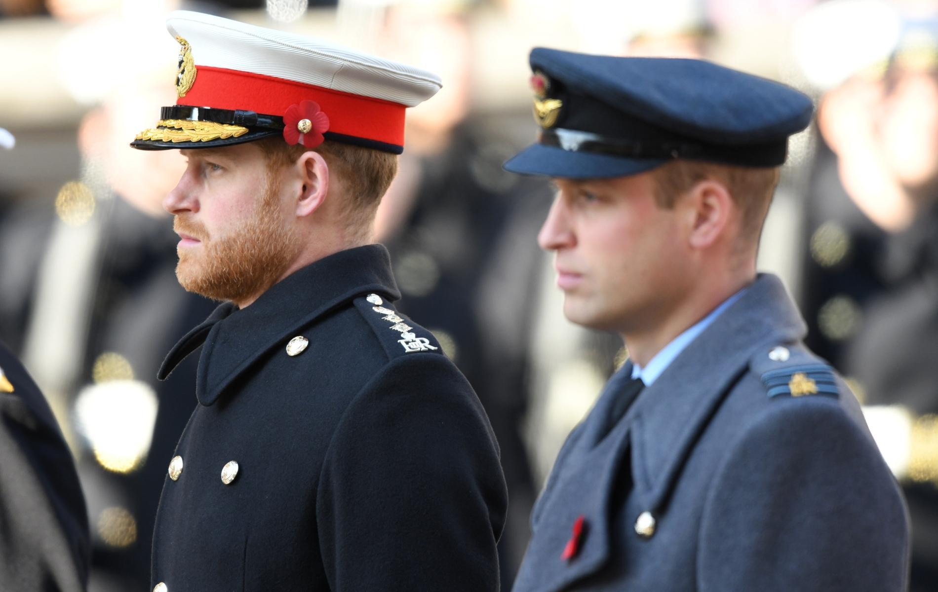Entre les princes William et Harry, l'espoir d'une réconciliation cet été lors de l'hommage à Lady Di