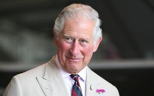 Un cliché inédit du prince Charles et du prince Louis a été dévoilé
