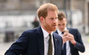 Le prince Harry et la portière : le nouveau faux pas qui agite la Grande-Bretagne