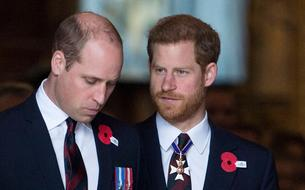 La réconciliation entre les princes Harry et William :