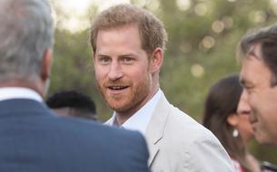 Le prince Harry porte désormais une queue de cheval, selon son voisin Rob Lowe