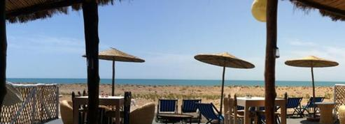 Bain de nature à Essaouira
