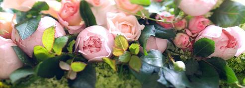 Offrez-vous la vie en roses