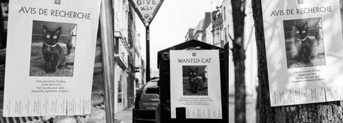 Givenchy organise une chasse au trésor pour assister à son prochain défilé