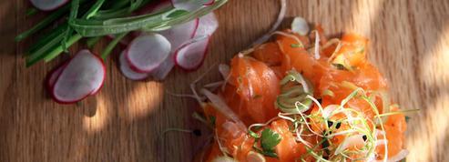 Tartare de saumon épicé