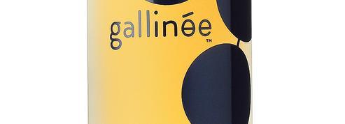 Gallinée, la start-up qui cultive les bonnes bactéries de la peau