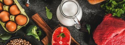 Quels sont les aliments riches en protéines ?