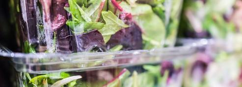 Salade en sachet, conservation, saisonnalité... Le vrai du faux de la feuille verte