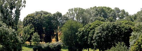 Un jardin d'Éden à deux pas de la capitale