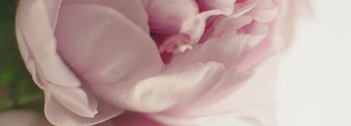 Dior mise sur une cosmétique écoresponsable avec sa ligne Capture Totale C.E.L.L. Energy