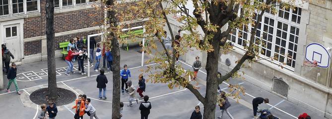 «Macron démission» : ces enfants qui jouent aux «gilets jaunes»
