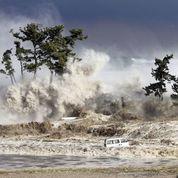 Japon : après le tsunami, les recherches se poursuivent