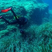 Sous l'eau, il n'y a pas de monde du silence
