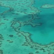 À la découverte de la Grande Barrière de Corail