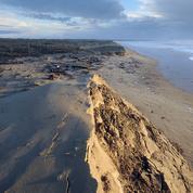 Le printemps va-t-il sauver nos côtes ?