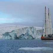 Tara et les oursons polaires