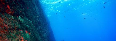 Merveilleuses épaves de Méditerranée