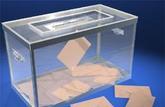 Présidentielle et législatives: comment voter par procuration