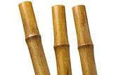 Comprendre les matériaux: le bambou
