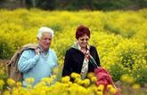 A quelle pension de réversion aurez-vous droit?
