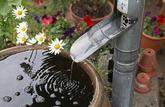 Récupérer l'eau de son toit: seulement pour l'arrosage?