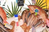 Savoir reconnaître la fraîcheur d'un poisson