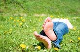 Créer et entretenir une pelouse: les secrets du tapis vert