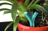 Pots de fleurs branchés