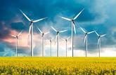 Trouble de voisinage: les éoliennes ont du plomb dans l'aile