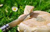 Des reblochons contenant des salmonelles ne doivent pas être consommés