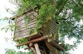 Impôts locaux: une cabane dans un arbre est imposable