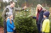 3 choses à savoir avant de choisir son sapin de Noël