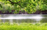 Riverain de cours d'eau, un long fleuve pas si tranquille…