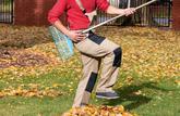 Cas pratique: les feuilles mortes du voisin envahissent mon jardin