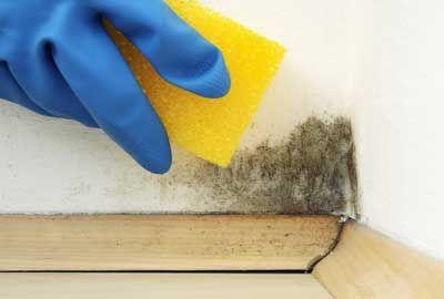 3 Solutions Pour Chasser L Humidite Des Murs