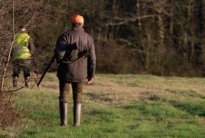 Les dates d'ouverture de la chasse sont fixées pour la saison 2017-2018