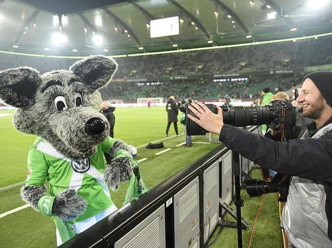 Wolfsburg-Bayern-Mascotte-de-Wolfsburg_full_diapos_large.jpg