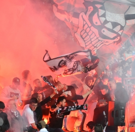 Supporters Angers