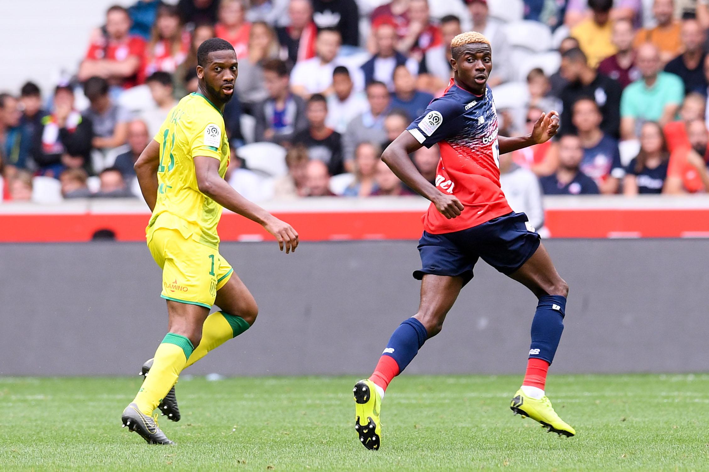 Football - Ligue 1 - Osimhen, le nouveau serial buteur de Lille ?