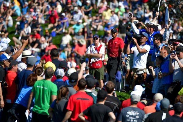 Golf - Genesis Open : Woods ou l'appétit du Tigre