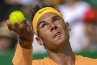 RAFAEL NADAL (Espagnol)  - Page 9 Panoramic_nmona18042018_059_medium