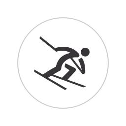 vitesse skieur super g
