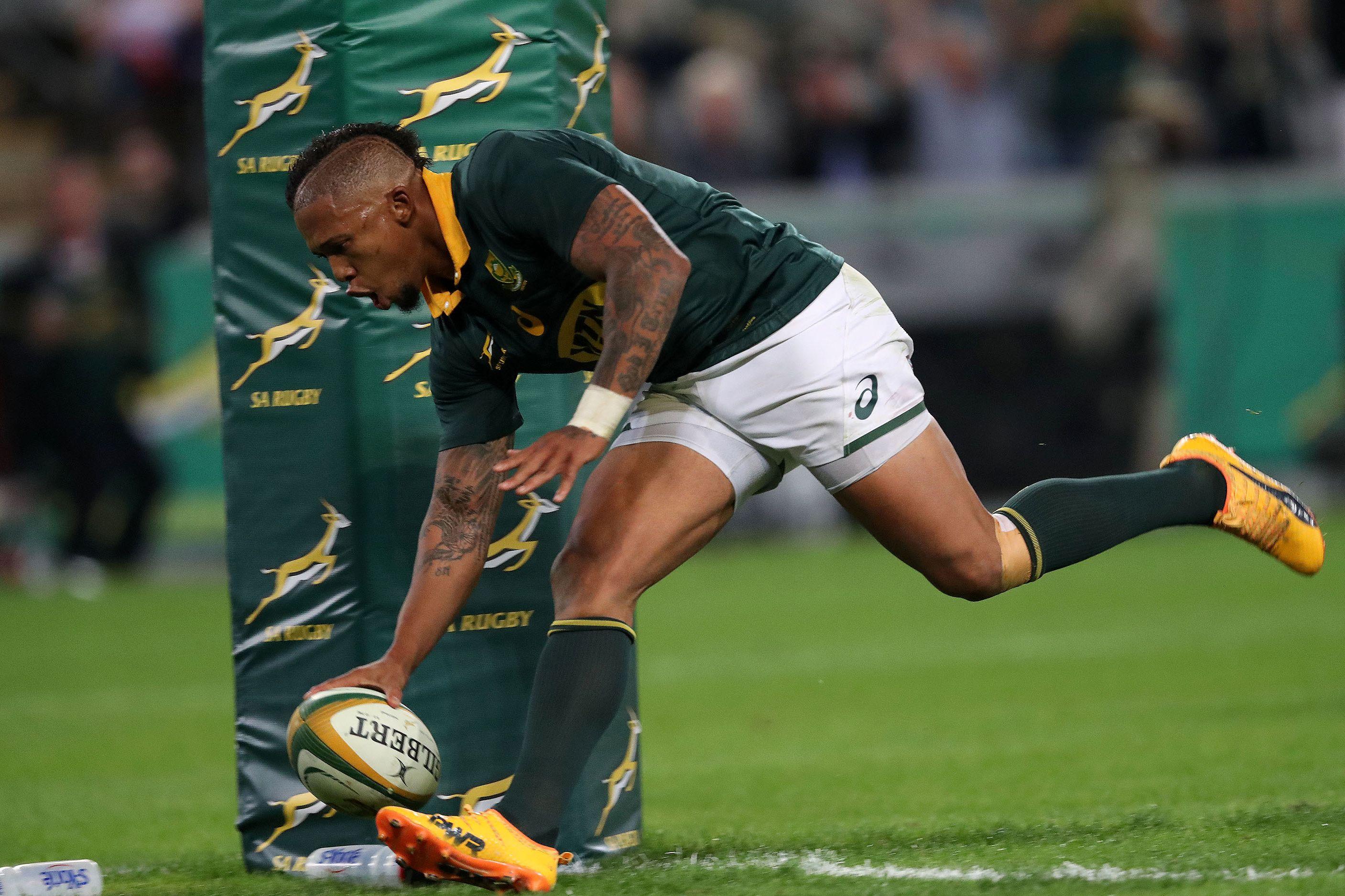 Rugby - Comment les Springboks sont sortis de l'ornière