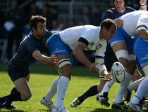 Italie-France : Sergio Parisse-Morgan Parra