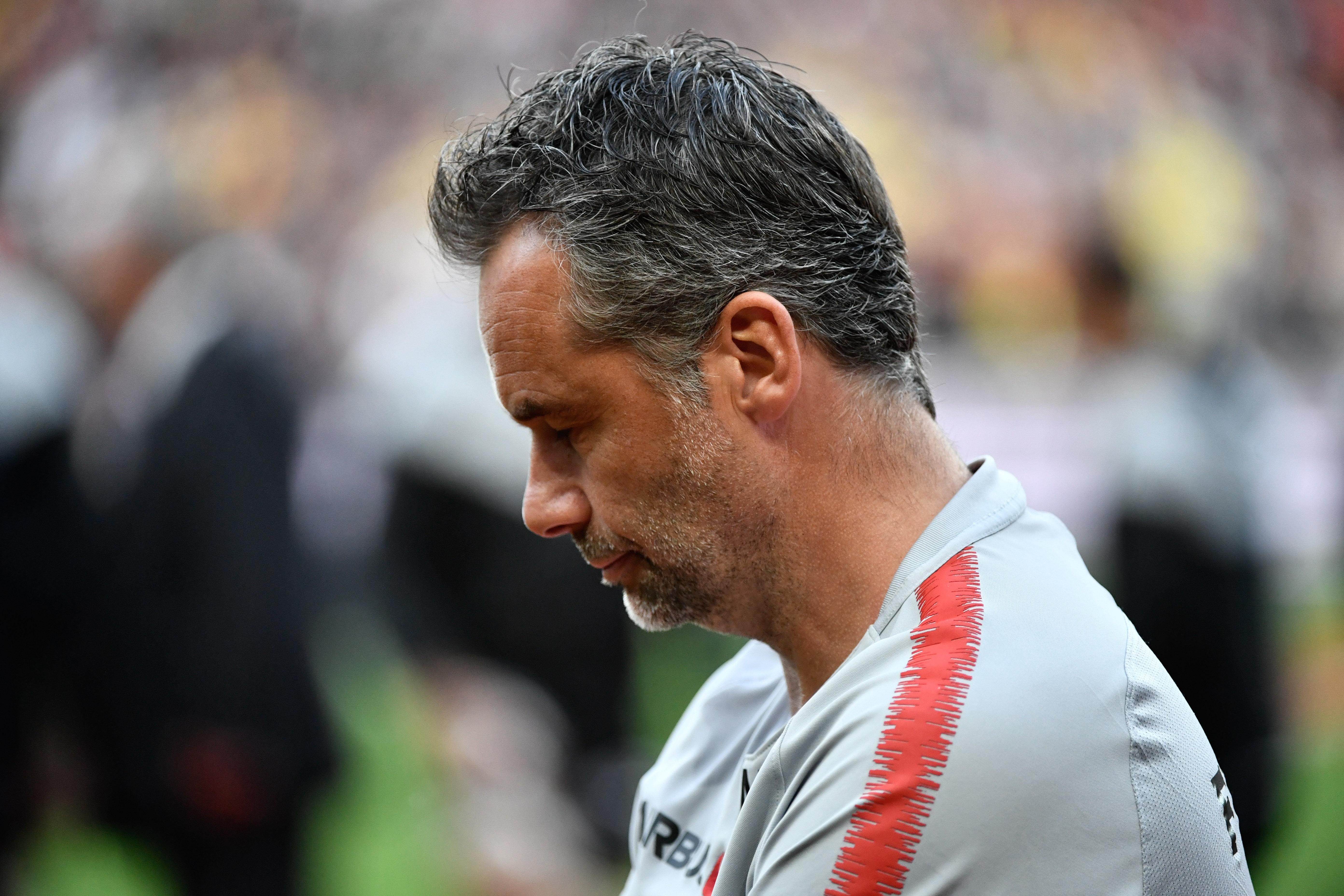 Rugby - Top 14 - L'effectif amoindri du Stade Toulousain inquiète Mola
