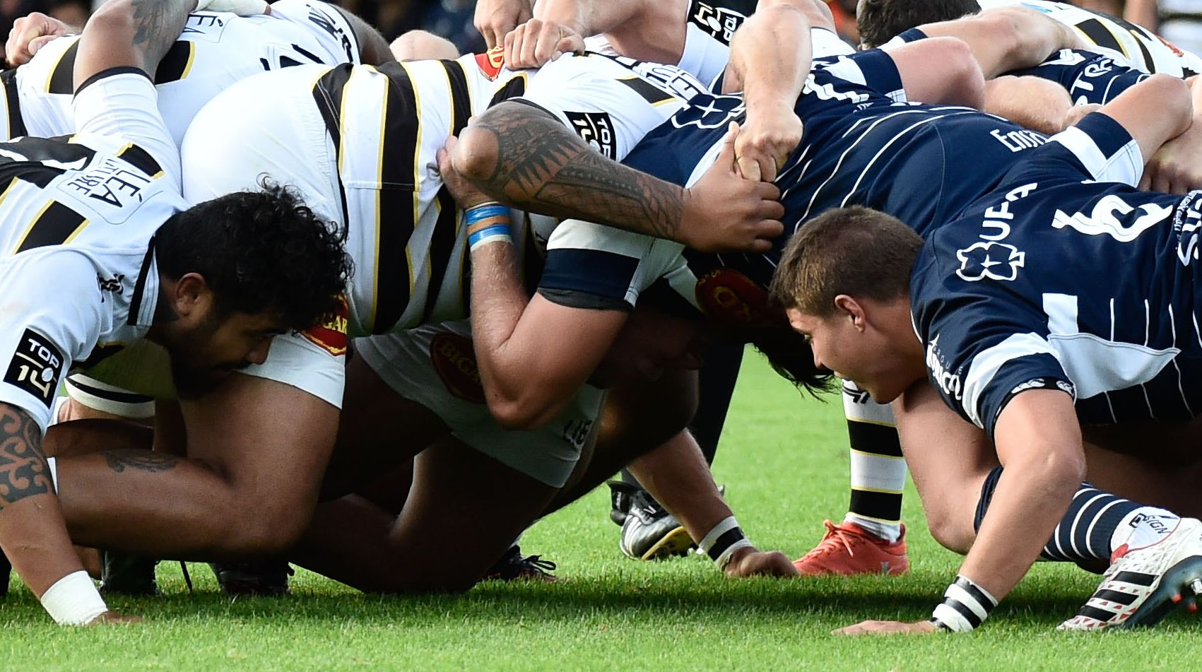 Rugby - Top 14 - Top 14 : La 5e journée en direct