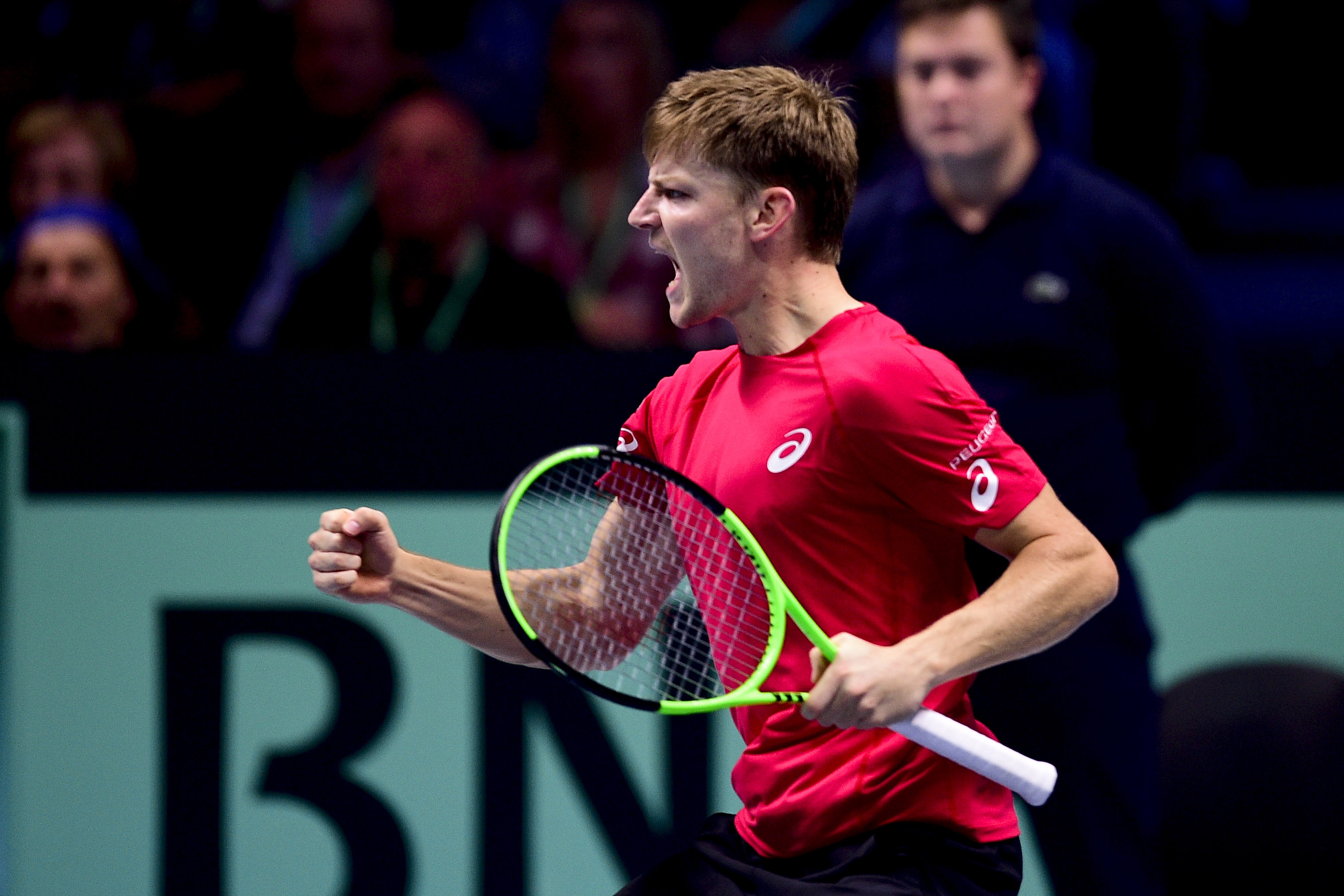 Tennis - Coupe Davis - David Goffin, la menace en 3 points
