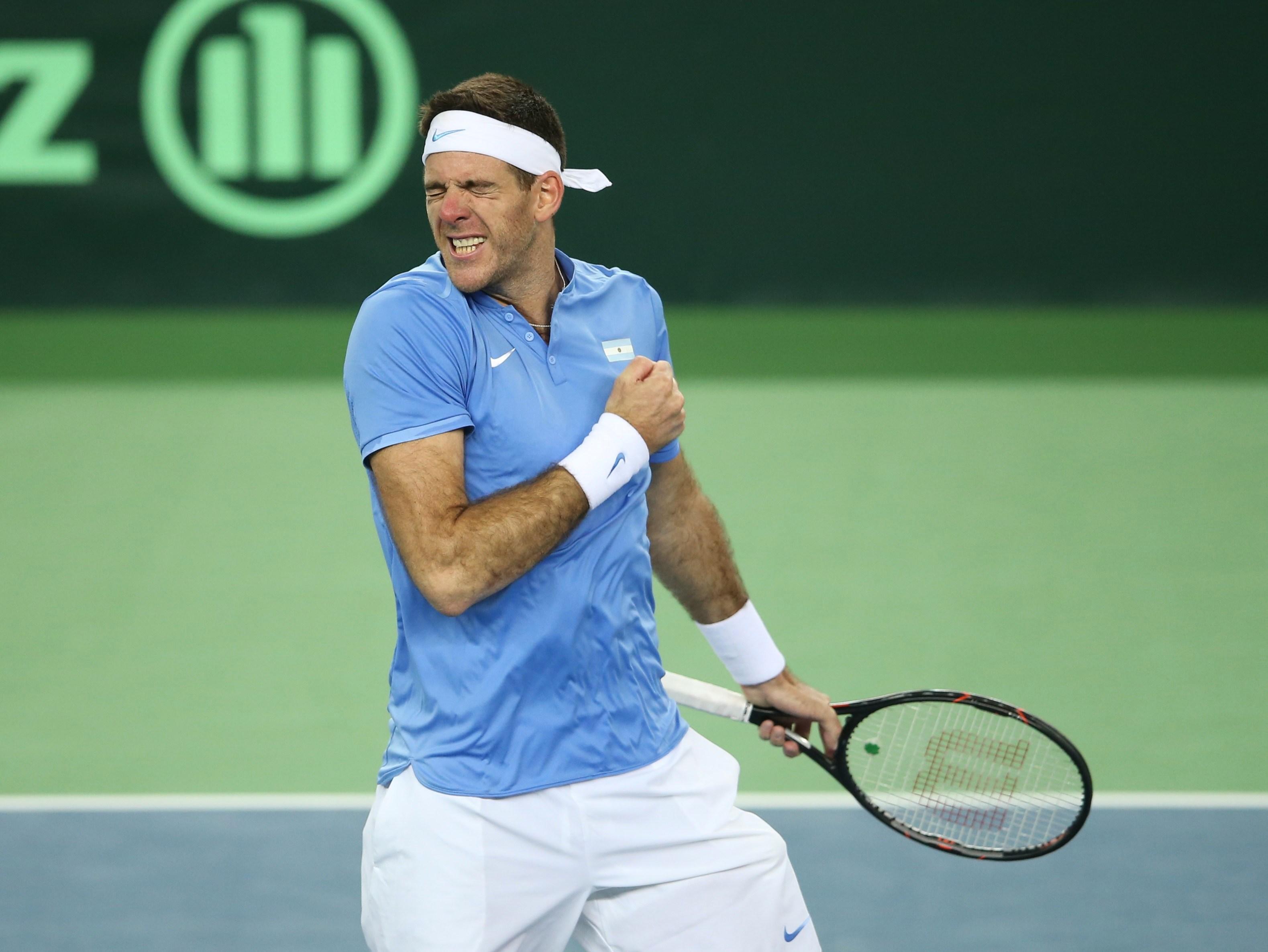 Tennis - Coupe Davis - Juan Martin Del Potro, la force du rêve argentin