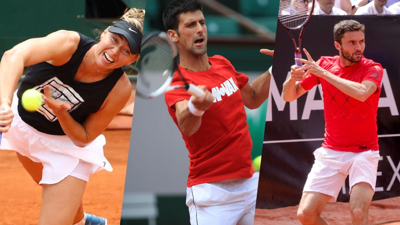 Tennis - Roland-Garros - Sharapova, Djokovic, Simon… 5 raisons de suivre Roland-Garros ce lundi